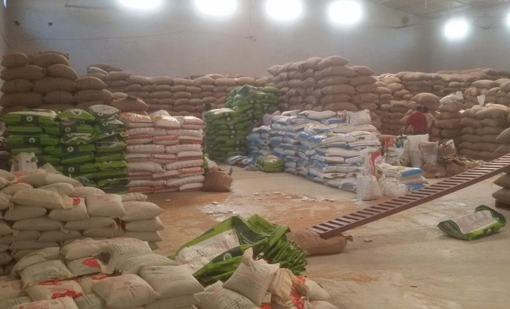 Agri Entrepreneurship: Earning livelihood through seeds production