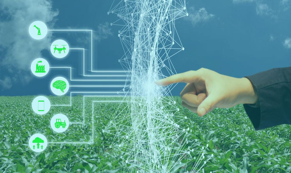 Artificial Intelligence in agriculture eases risk of changing weather patterns