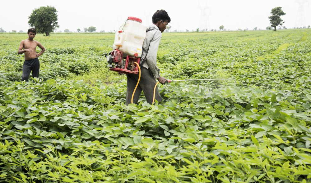 Global agrochemicals market to reach $276 bn by 2022: Study