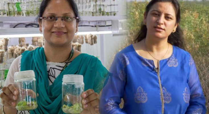 Two women scientists to get ICRISAT's highest award