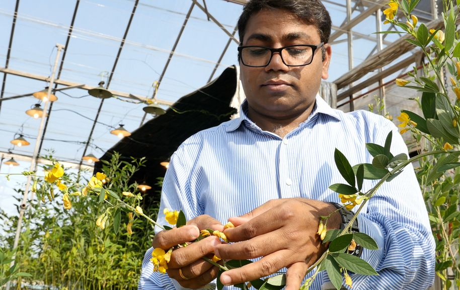 Dr Rajeev K Varshney of ICRISAT during a field visit on chickpea and pigeon pea research