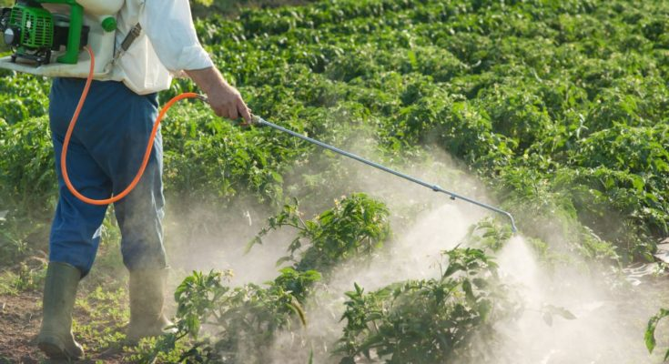 Centre urges agrochemicals industry to focus on meeting food needs