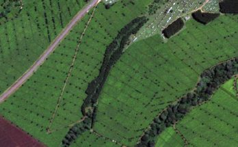 PMFBY: Using satellite imagery for assessing farmers crops