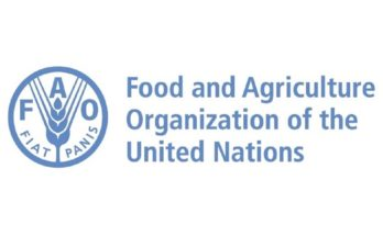 FAO scales up fight against Fall Armyworm