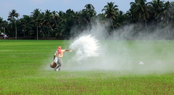 d Talcher unit of Fertilizer Corporation of India (FCIL) has been working towards restarting this urea unit, Minister of Chemical and Fertilizers DV Sadananda Gowda informed the Rajya Sabha in a written reply on Friday.