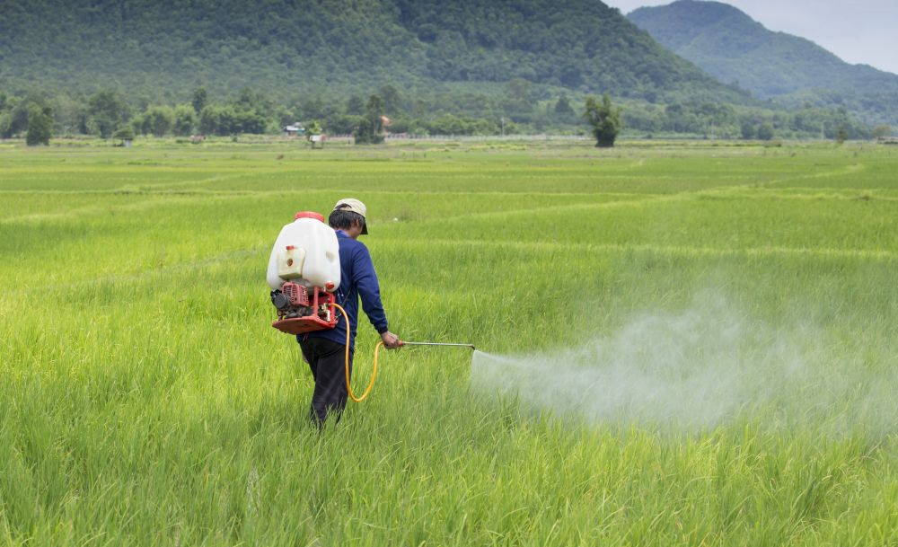 HIL invites JV investments in agrochemical projects in India
